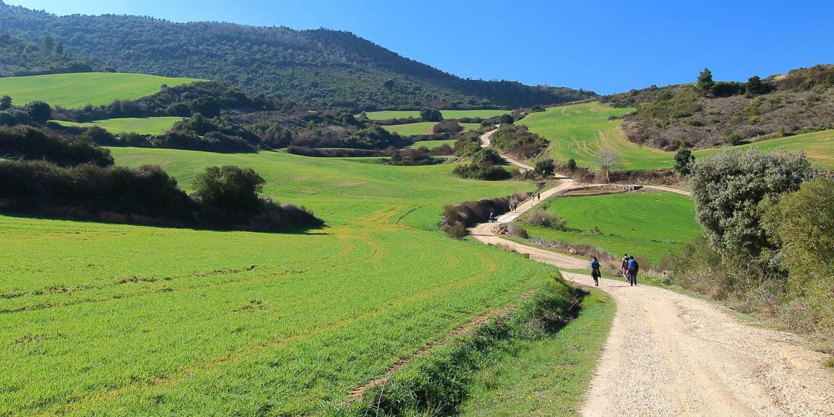 PILGRIMS WALKING;SPAIN