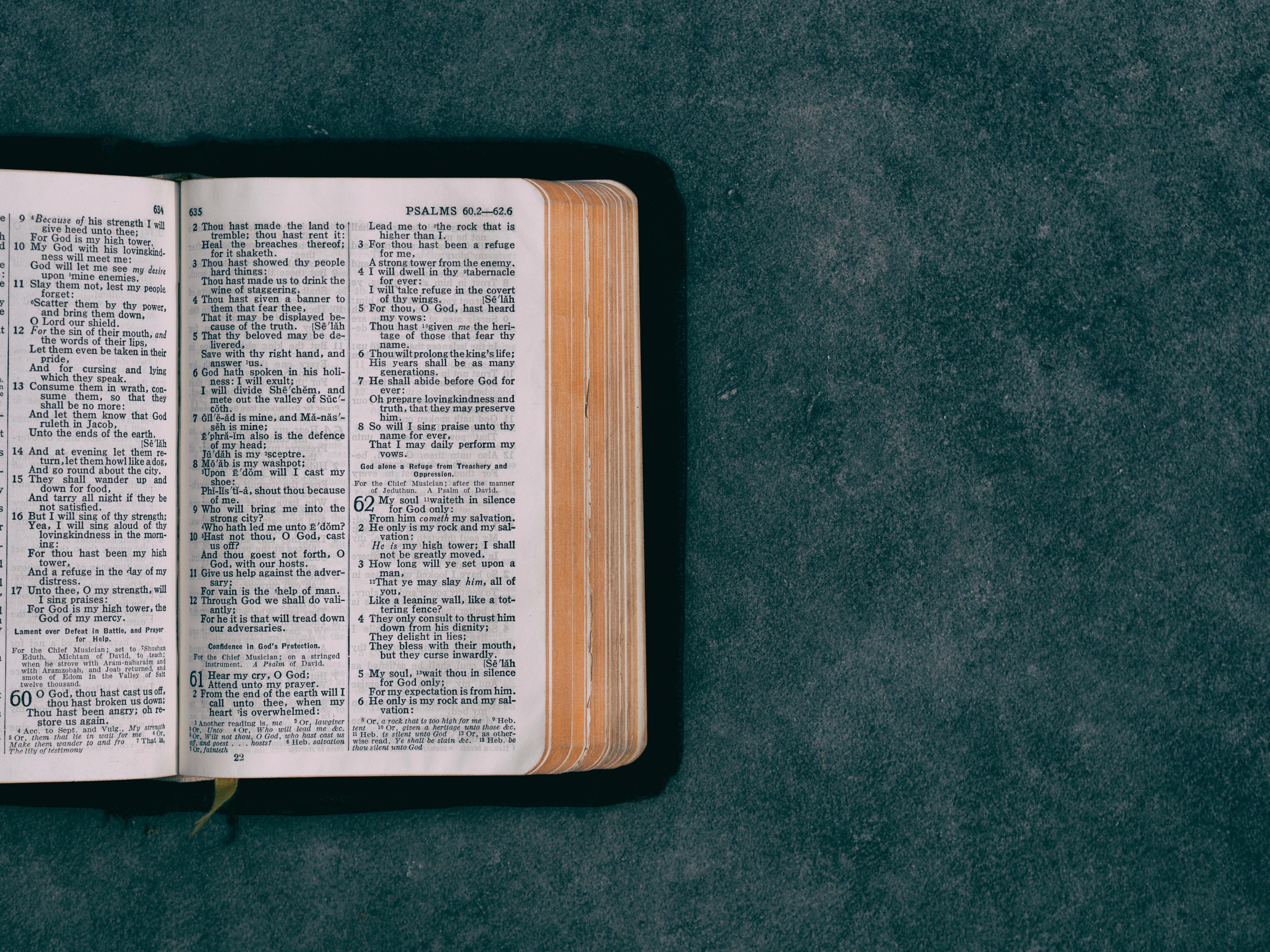 Otwarta Biblia na zielonym tle